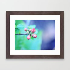 Hello Sweet Spring  Framed Art Print