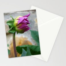 flor Stationery Cards