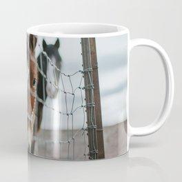 On the Road to Flagstaff, v.4 Coffee Mug