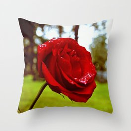 Single red rose Throw Pillow