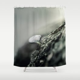 Don't look at the leaf Shower Curtain