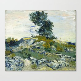 The Rocks by Vincent van Gogh Canvas Print