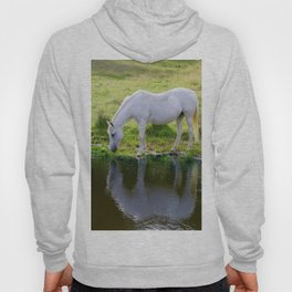 Wild Horse Drinking from a Pond Hoody