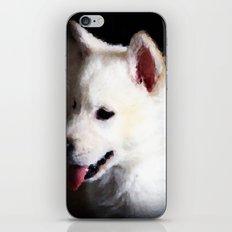 Snow Dog iPhone & iPod Skin
