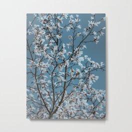 Vincent Van Gogh Dreams Of White Flowers Metal Print