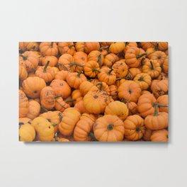 Lil Pumpkin Metal Print