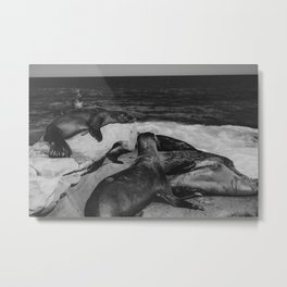 Water Puppies Metal Print
