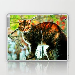 Cat the Huntress Laptop & iPad Skin