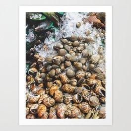 Jewels of the Sea, Bangkok Art Print