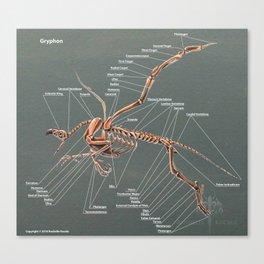 Gryphon Skeleton Anatomy Canvas Print