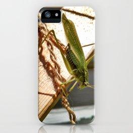 Katydid on wooden trellis iPhone Case