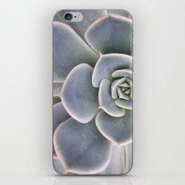 Succulent Leaf Close Up Photography | Plant | Cactus | Botanical iPhone Skin