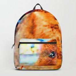 CUTE VELOCE Backpack