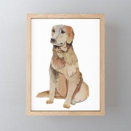 The Golden Retriever Framed Mini Art Print