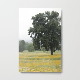 The Daisy Tree Metal Print