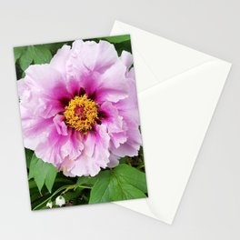 Rose and mauve peony with a heart of gold Stationery Cards