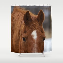 Auburn Shower Curtains