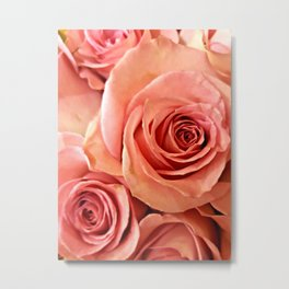 Peach Roses 4 Metal Print