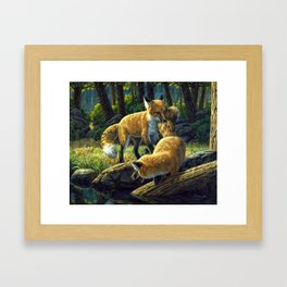 Red Fox Pups Playing Framed Art Print
