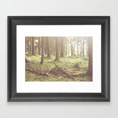 The magical forrest Framed Art Print