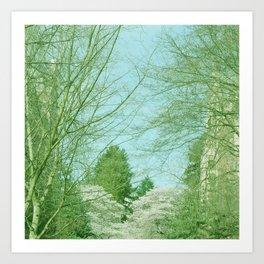 SKY AND TREES Art Print