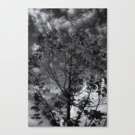 Gray Autumn Canvas Print