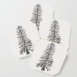 Cedar Tree Coaster