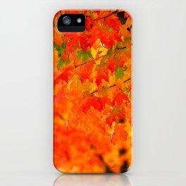 VIVID ORANGE MAPLE TREE FALL LEAVES iPhone Case
