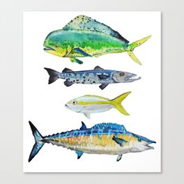 Caribbean Fish Canvas Print