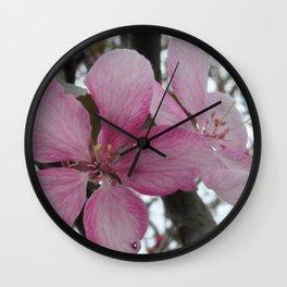 Crabapple Blossoms Wall Clock