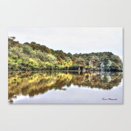 The Coming Of Winter Canvas Print