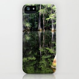 Florida Beauty 4 iPhone Case
