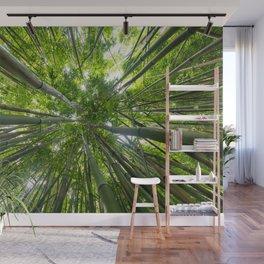 Looking Up A Bamboo Forest Canopy, Haleakala, Maui, Hawaii Wall Mural