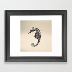Water Pony Framed Art Print