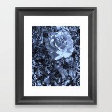 roses X Framed Art Print