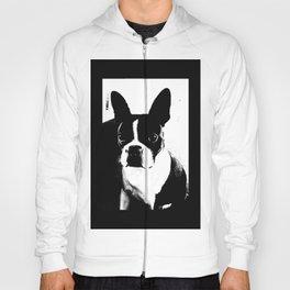 Boston Terrier Love Hoody