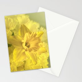 Narcissus Heaven  Stationery Cards