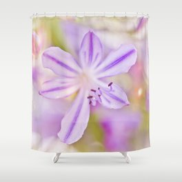 Summer dance - macro  floral photography Shower Curtain