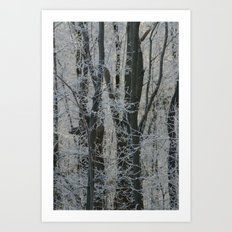 Michigan Winter  Art Print