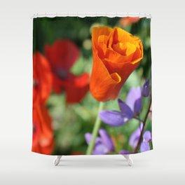 Orange Poppy Unfurling in Haines, Alaska by Mandy Ramsey Shower Curtain