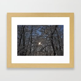 Into the Woods - Minnesota Framed Art Print
