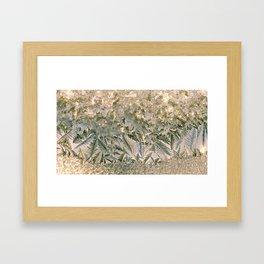 icy window Framed Art Print