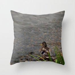 Au bord de l'eau. Throw Pillow