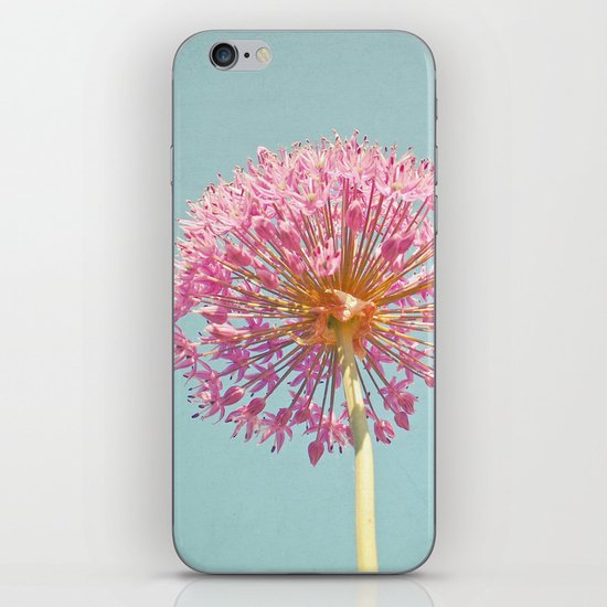Pink Allium iPhone & iPod Skin