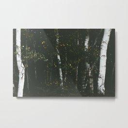 Holme Woods 8 Metal Print