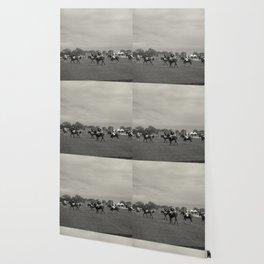 Polo Wallpaper