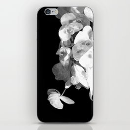 White Orchids Black Background iPhone Skin