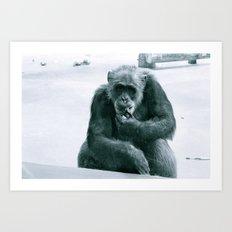 Monkey See Art Print