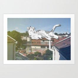 Rooftop Slumba Art Print