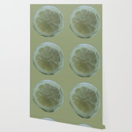 Slice of Lemon – Watercolour Wallpaper